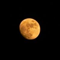 Gli innamorati sulla luna