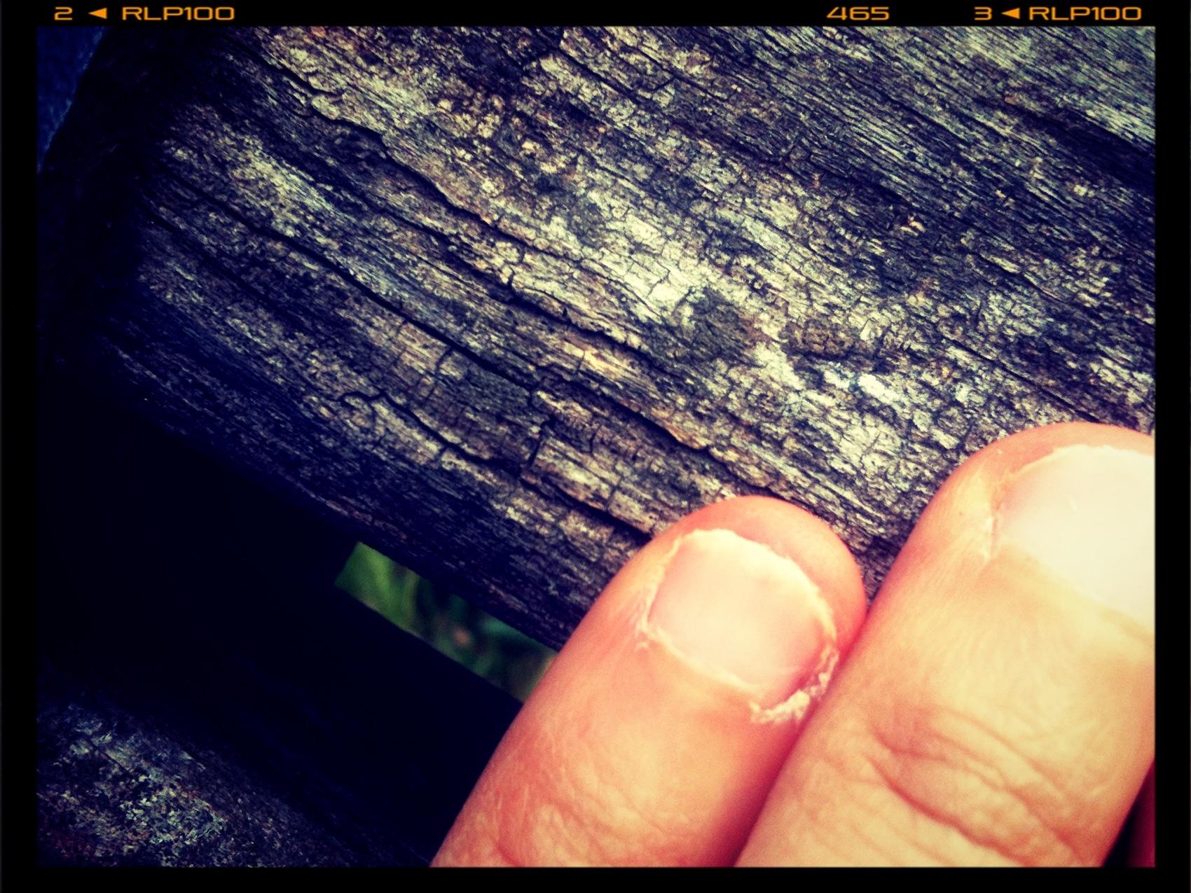 mangiarsi le unghie.jpg