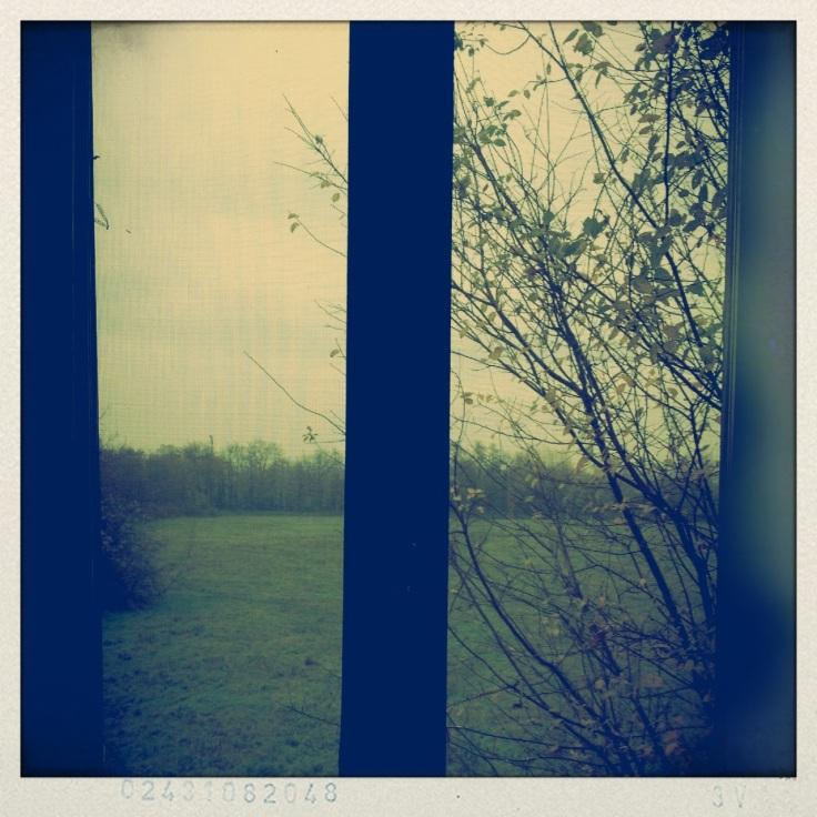 20121127-093115.jpg